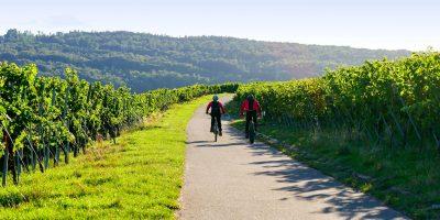 Natur Tagungszentrum Schmerlenbach Aschaffenburg Radfahren