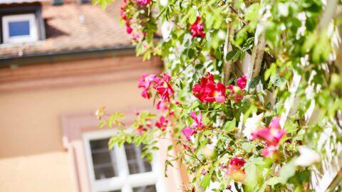 Romantikwochenende Familienurlaub Aschaffenburg Schmerlenbach